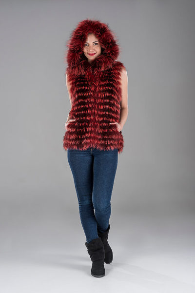 Red Fox with Knitting Gillet(Vest)